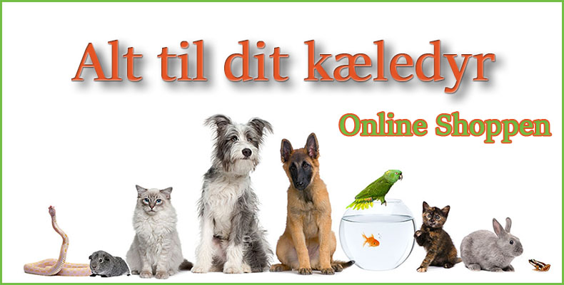 Dyrenes Verden - Billig Hundefoder